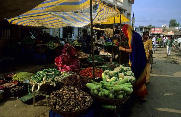 Dhariyawad markt