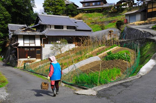Volg de Bergroute naar Kyoto