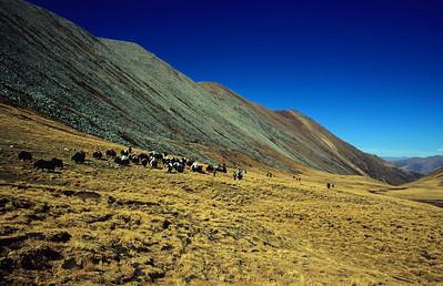 Trek Ganden - Samye