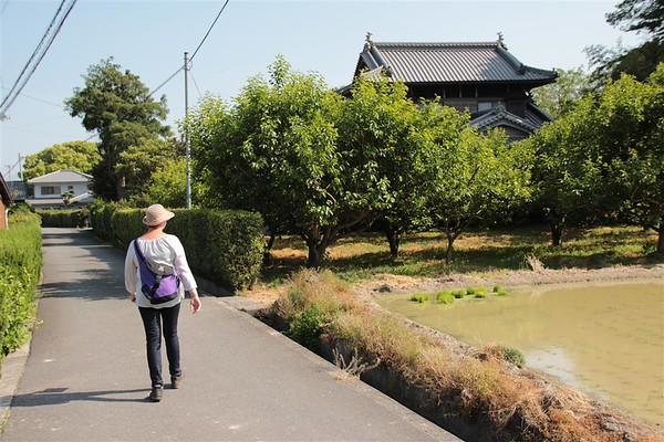 88 tempel walk impressie