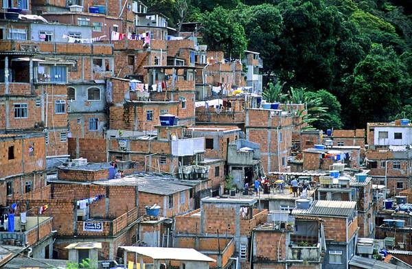 Favela en Tujuca forest excursie