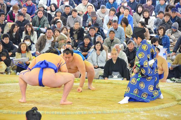 Sumo demonstratie toernooi