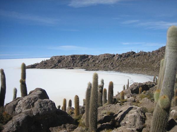 4 daagse Jeeptocht Tupiza naar Salar de Uyuni